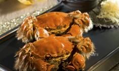澳門威尼斯人、金沙城中心及澳門金沙  為賓客呈獻時令大閘蟹宴